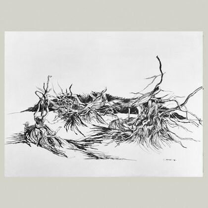 """""""Senza titolo"""" 1971 matita su carta cm 34 x 49"""