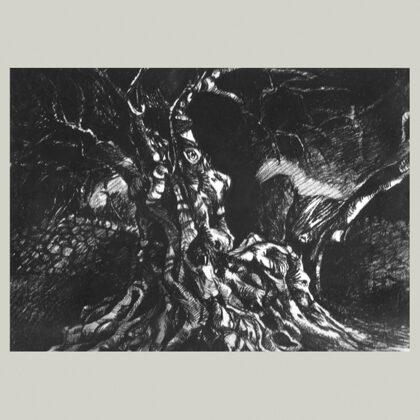 """""""Carrubo"""", 1966 carboncino su carta cm 35x50"""