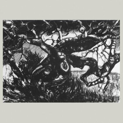 """""""Carrubo"""",1966 carboncino su carta, cm 35x50"""